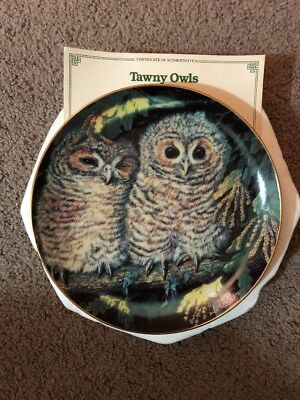 New Tawny Owls Baby Owls Danbury Mint Collector Plate