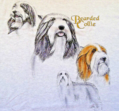 "Bearded Collie T-shirt  "" Ash "" Large ( 42 ~ 44 )"