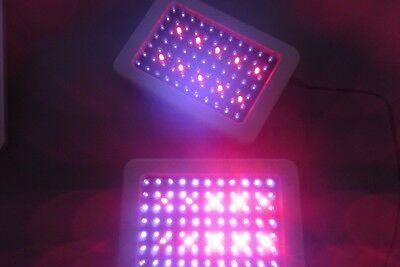LED Technologies DPL - Deep Penetrating LED Light Therapy Pair Used