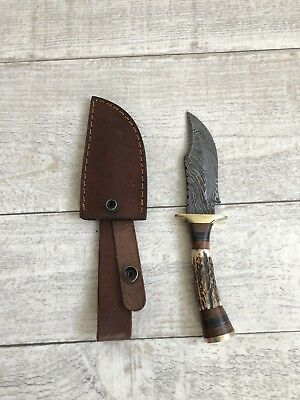 Damascus Hunting Skinning Knife With Stag Horn Handle