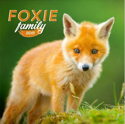 FREE UK POSTAGE FOXES 2019 CALENDAR NATIONAL GEOGRAPHIC OFFICIAL WALL