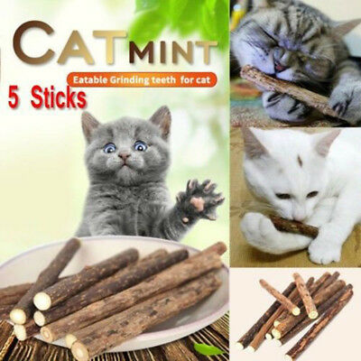 5Pc/Bag Pet Cat Snacks Teeth Molar Cleaning Matatabi Chew Catnip Stick Brush Toy
