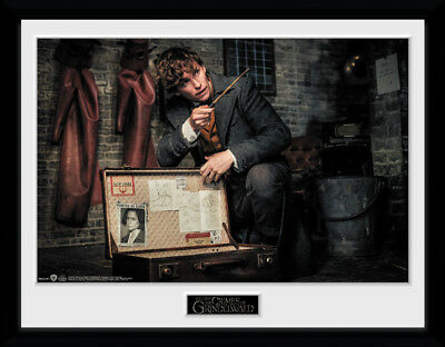 Fantastic Beasts 2 Book Signing Collector Print 30x40 cm art Wizarding World