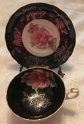 Royal Halsey L&M Very Fine Black Footed Rose Cup And Saucer