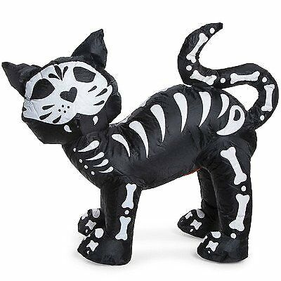 3 foot battery inflatable black cat
