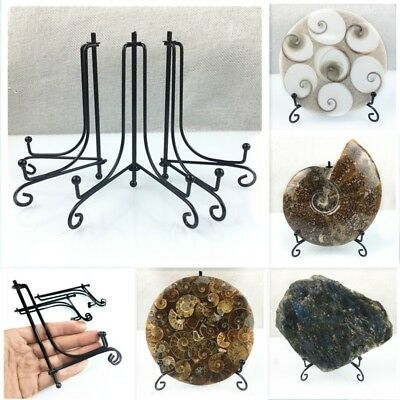 Wholesale Price!6Pcs Screw the fossil stand pedestal holding 150*110mm 55-65g