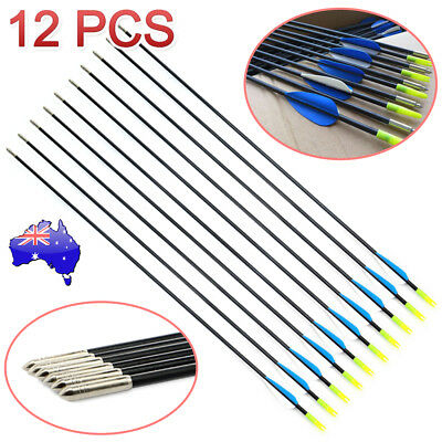 "12x 31"" Fiberglass Arrows Archery Hunting Target Compound Bow Fiber Glass Bows"