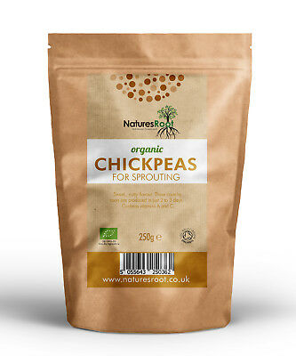 Organic Chickpeas Chic Peas for Sprouting | Non GMO | Sprout Seeds | Garbanzos