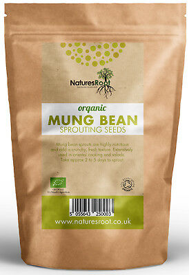 Organic Mung Bean Sprouting Seeds - Superfood | Non GMO | Microgreen Sprouts
