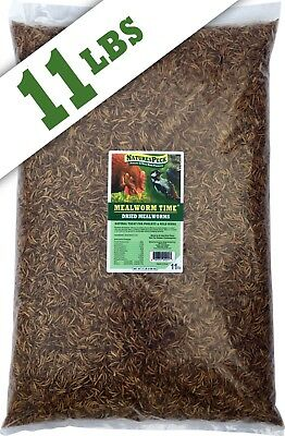 MealwormTime™ Dried Mealworms ( 11 lbs )Non GMO