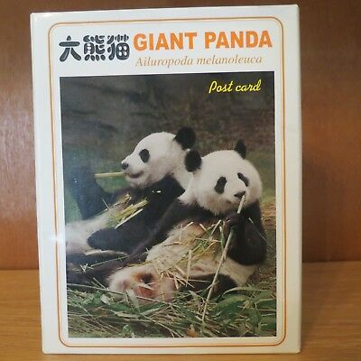 "Beijing Zoo Giant Panda Postcards Lot of 8 with Folder  6 1/2"" x 4"" 2001 REDUCED"