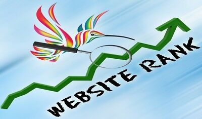 10.000 Visitors to your Website within 48 hours