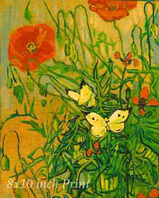 Poppy Flowers By Vincent Van Gogh Canvas Print Wall Art Large 30x20