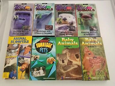 Animals & Pets VHS Tapes Lot of 8 Videos Babies Bloopers Jack Hanna AFV Wild