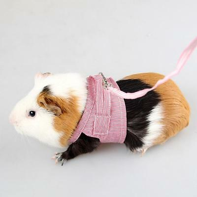 Leash Rope For Small Hamster Rabbits Squirrel Guinea Pig Harness Leashes