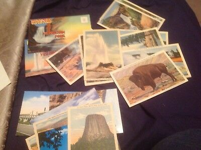 Vintage 2 Haynes Souvenir Fold Out Postcard Yellowstone & 21 cards (& Wyoming)