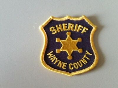 Wayne county michigan  sheriff  police hat  patch old style