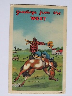 1942 WWII Postcard Vintage Comic Bucking Bronco Horse Signed The Sunfish #2160