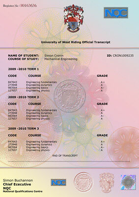 Fake Novelty Transcript Degree Diploma Certificates Fun Personalised Gift