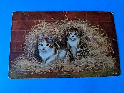 Vintage postcard. Two kittens in straw. Postmarked 1911.