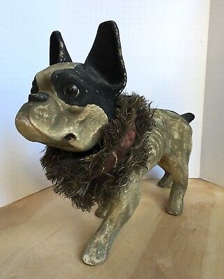 French Bulldog Boston Terrier Paper Mache Reproduction Nodder Almost Life Size!