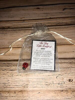 """""""The Tiny Little Ladybug"""" Pocket Token With Card And Cream Gift Bag"""
