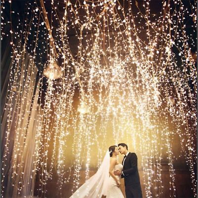 20-1000 LED Fairy String Lights Waterproof Decro Wedding Garden Curtain Wedding