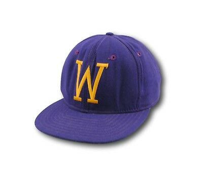 Vintage UW University of Washington Huskies New Era Pro Model Strapback Hat  USA 7b48e6acb