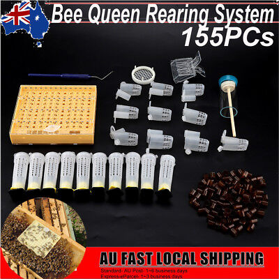 155x Complete Bee Queen Rearing Cupkit Box System Beekeeping Cage Cell Cup Kit