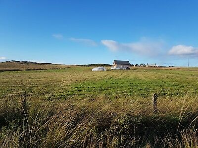 Of the grid, crofting property in the highlands , 5 acres, 2 story cabin