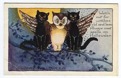 Antique Halloween Postcard Owl & Black Cats Signed Whitney Made Worcester Used