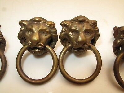 "Antique Set Of 6 Solid Brass Lions Head Drawer Pulls Knob With Rings 1 3/8"" X2"""