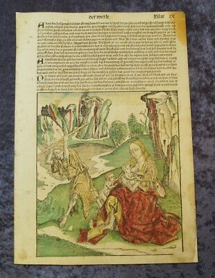 Paradise Adam Eve Cain Abel Oldcoloured Woodcuts Schedel Leaf Ix 1493 #c062