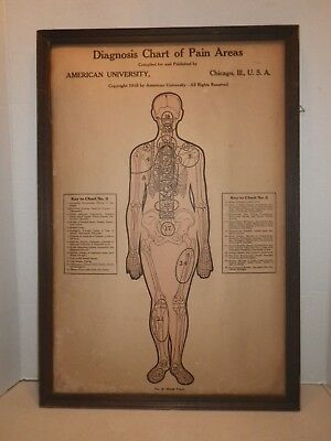 1916 American University Chicago - Diagnoss Chart of Pain Areas - Chart 2