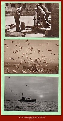 Collection x3 early F.M. Sutcliffe Gallery Real Photo Postcards of WHITBY