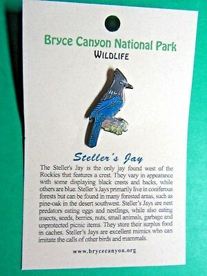 Steller's Jay Bryce Canyon National Park Wildlife Series Lapel Hat Pin (84)
