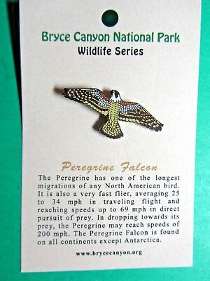 Peregrine Falcon Bryce Canyon National Park Wildlife Series Lapel Hat Pin (43)