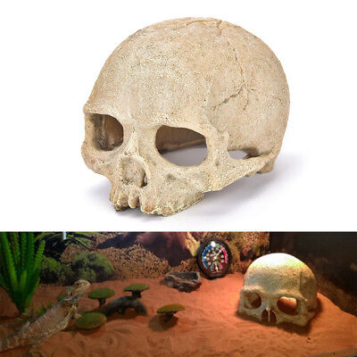 Aquarium Resin Skull Head Cave Ornament Fish Tank Underwater Decoration Decor _S
