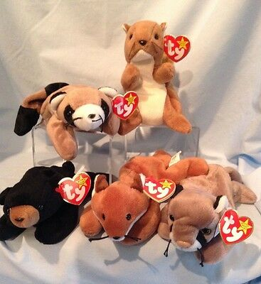 Ty Beanie Babies Lot of 5 Wildlife All Retired 1993 to 1998 3+ Boy Girl $8.99