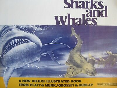 Vtg Library READ Poster SHARKS WHALES Illustrated BOOK Original EDUCATIONAL Rare