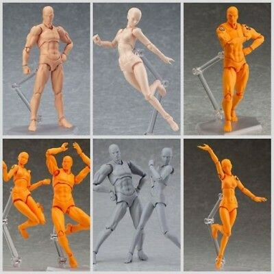 2.0 Body Kun Doll PVC Body-Chan DX Action Play Art Figure Model Drawing For SHF