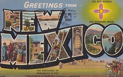 Greetings from New Mexico - Large Letter Linen