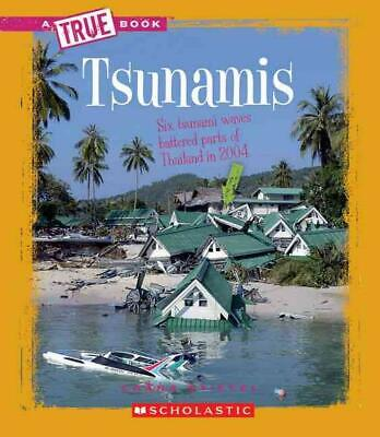 Tsunamis by Chana Stiefel (English) Library Binding Book Free Shipping!