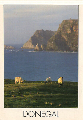 Ireland - Donegal  -  Extends along much of the north-west coast  -  1980