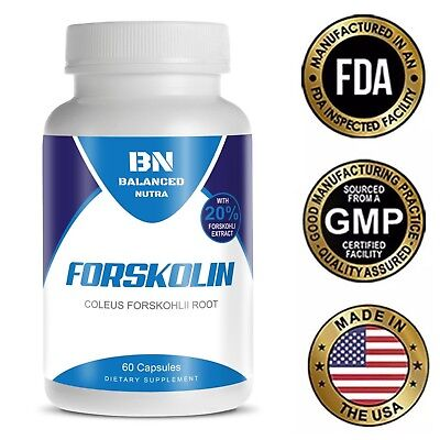 FORSKOLIN EXTRACT  MAX COLEUS FORSKOHLII Weight Loss 20% STANDARDIZED 30 Day