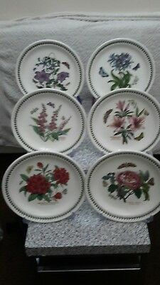 portmeirion botanic garden set of plate