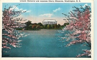 Washington, DC, Lincoln Memorial & Japanese Cherry Blossoms, Old Postcard d4814