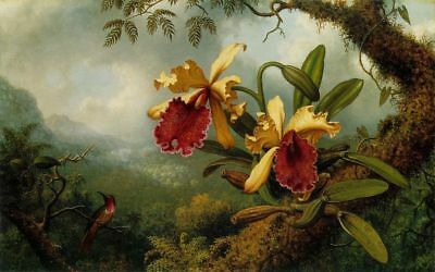 LMOP793 bird and flowers in forest 100% paint hand art oil painting on canvas