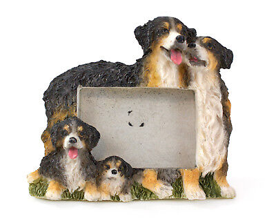 "E&S Imports Bernese Photo Frame Magnet 2.25"" x 1.5"", Cute Pet Dog Lover Gift!"