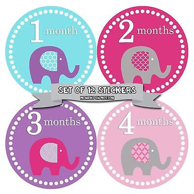 Months in Motion #085 Monthly Baby Girl Stickers Colorful Elephants Months 1-12